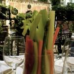 Dinner @Taverna la Fenice during Biennale di Venezia